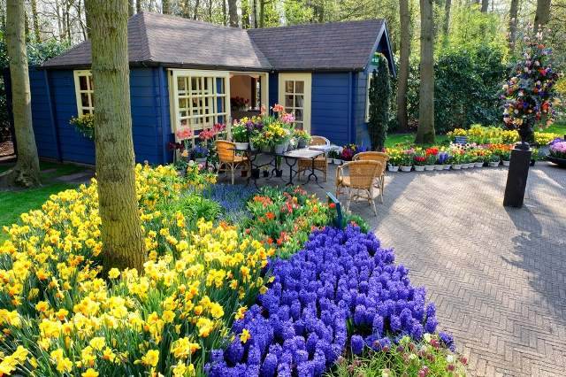 Best Places to Visit in Europe in May - Lisse, Netherlands