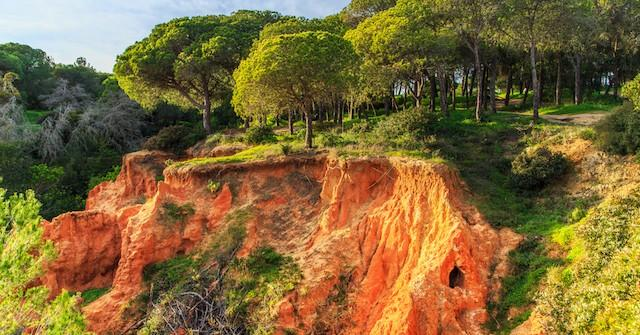 Explore Nature in the Algarve, Portugal