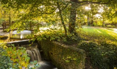 Attractions in Dublin: National Botanical Gardens