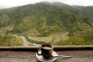 Coffee Farm Destinations