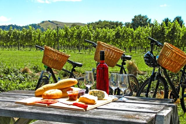 5-reasons-spring-is-the-best-season-to-visit-new-zealand-wine-tasting-vineyard-tours-auto-europe