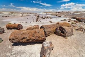 Route 66 Road Trip Planner - Petrified Forest, Holbrook, Arizona
